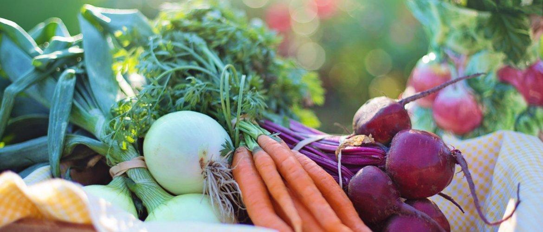 Fertilidade masculina e alimentação. Cesta com vegetais e frutos: cebola, cenoura e beterraba.