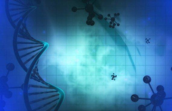Cromossomos identificados em exames genéticos