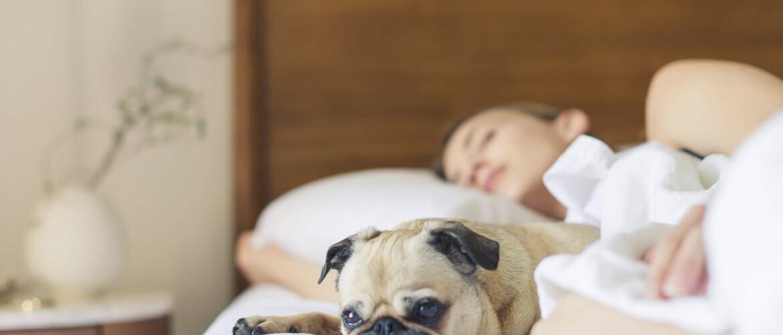 Mulher dormindo em cama para engravidar mais rápido
